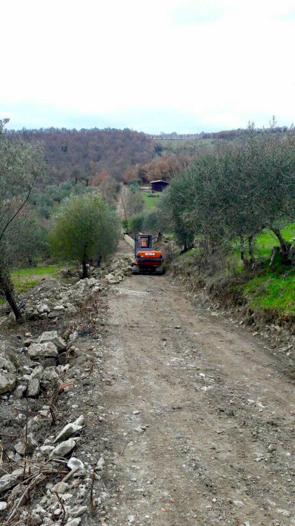 strada agricola la dea toscana