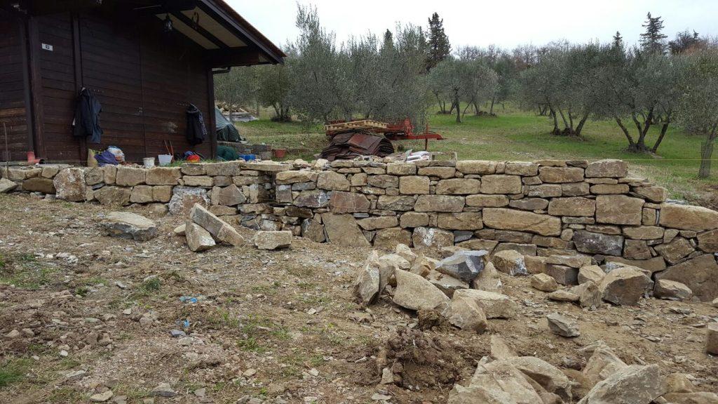 Lavori Agricola la Dea olio Rolando Uliveta